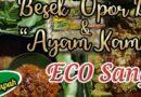 """Kuliner Makanan Khas Yogyakarta Besek """"Eco"""""""